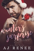 Winter's Surprise AJ Renee Holiday Romance